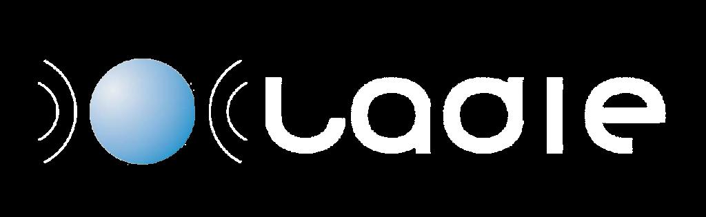 Logo principal LADIE
